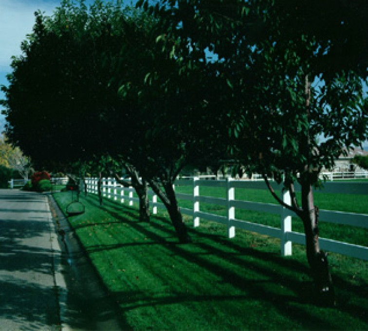 The American Fence Company - Sioux City - White Vinyl 3 Rail Ranch Rail Fencing