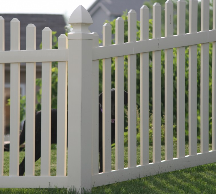 The American Fence Company - Vinyl Fencing, 4' overscallop picket 550
